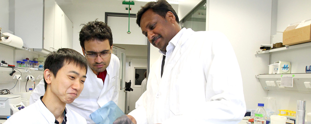 Professor Krishnaraj Rajalingam (right) and his international work group, the Molecular Signaling Unit, do basic research that is important to many medical fields. (photo: Stefan F. Sämmer)