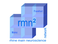 (link to the Rhine-Main Neuroscience Network website)