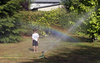 A lawn sprinkler provided cooling on this hot summer day (photo: Stefan F. Sämmer)
